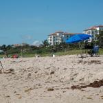 damon-2015-florida-300-day-3-d70-077.jpg