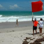 damon-2015-florida-300-day-3-d70-090.jpg