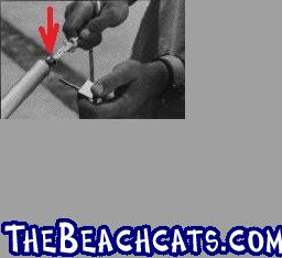 http://www.thebeachcats.com/gallery2/main.php?g2_view=core.DownloadItem&g2_itemId=119586&g2_serialNumber=3