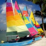 BBSH Biscayne Bay SandBAR Hoppers