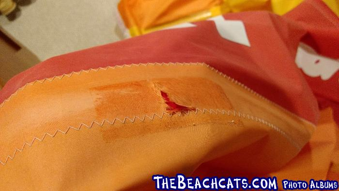 https://www.thebeachcats.com/gallery2/main.php?g2_view=core.DownloadItem&g2_itemId=134202&g2_serialNumber=4