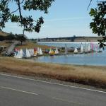 of the 57 boats at the Classic, 27 were Sea Sprays